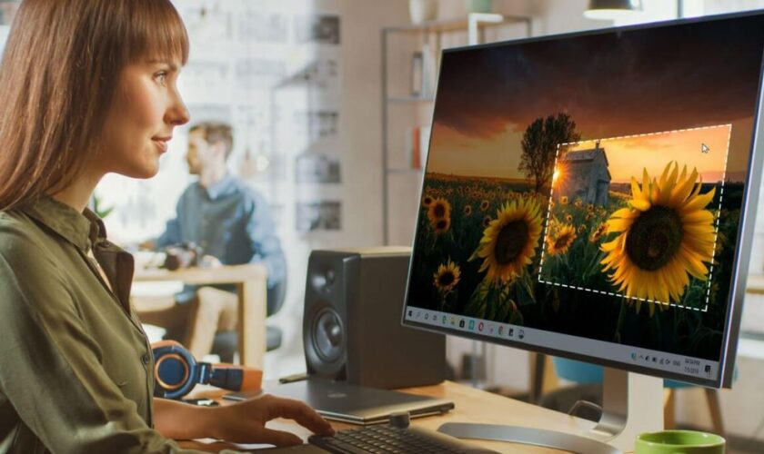 How to Take Screenshot With Mouse Pointer on Windows 10